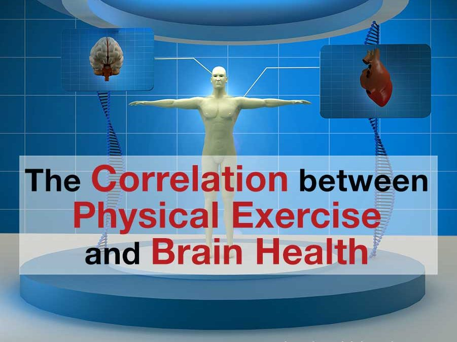 The​ ​Correlation​ ​Between​ ​Physical​ ​Exercise​ ​and​ ​Brain​ ​Health